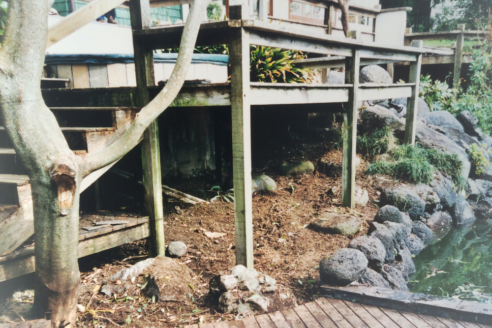 Rotten decking and old spa pool