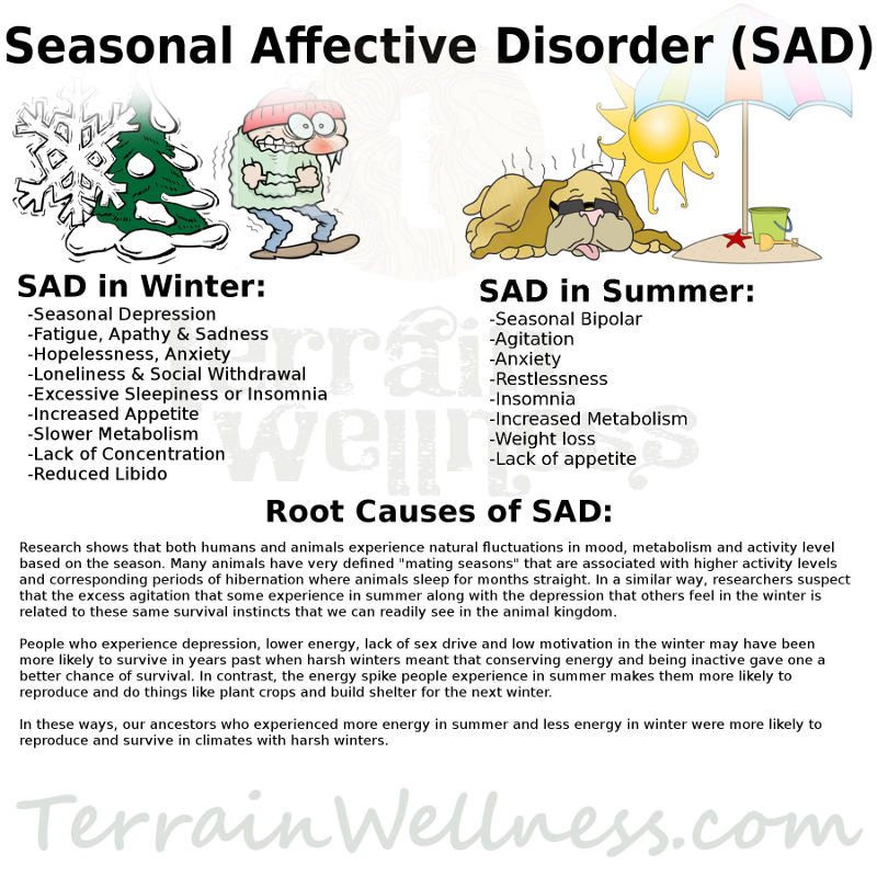 SAD-Seasonal-Affective-Disorder-Information.jpg