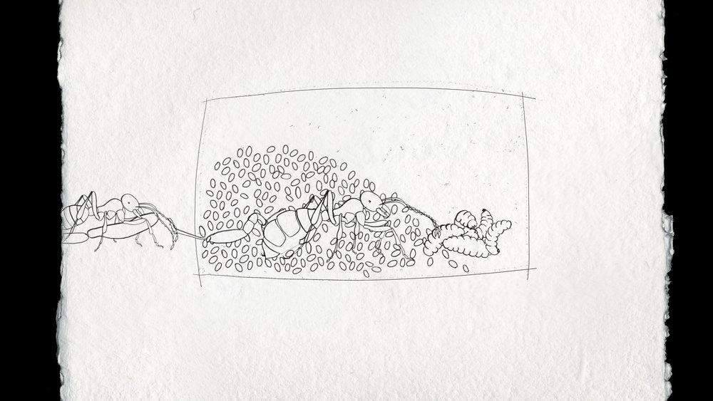 Ant Sisters_AnnaLindemann_still3.jpg