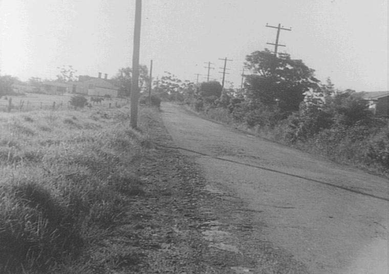 Duffy Avenue, Thornleigh looking South. 1935