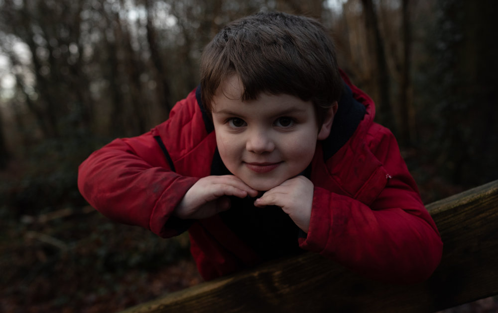Young lad posing on the bridge in the woods