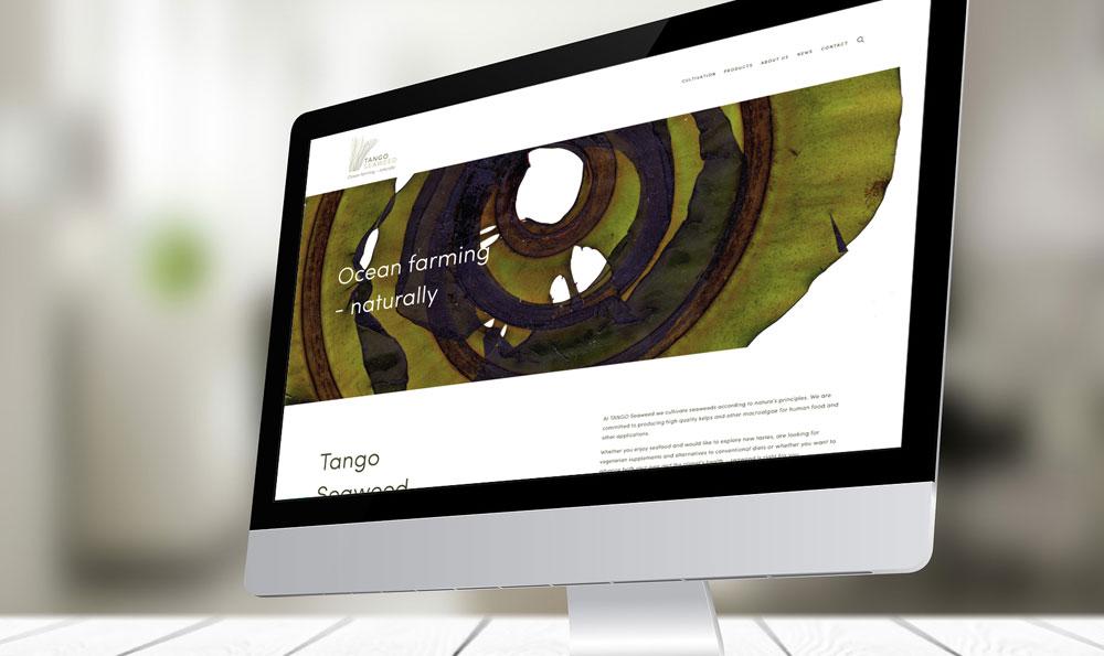 TANGO_web_1.jpg
