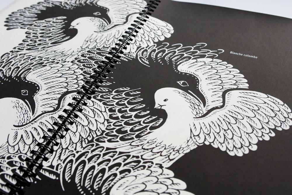 Noir Corbeau / Blanche Colombe