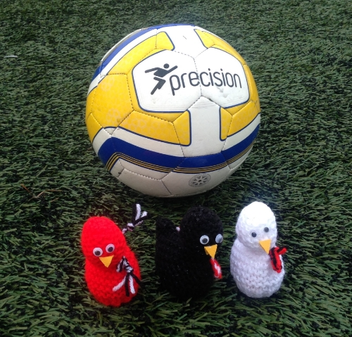 The Chicks get in on the action at training!