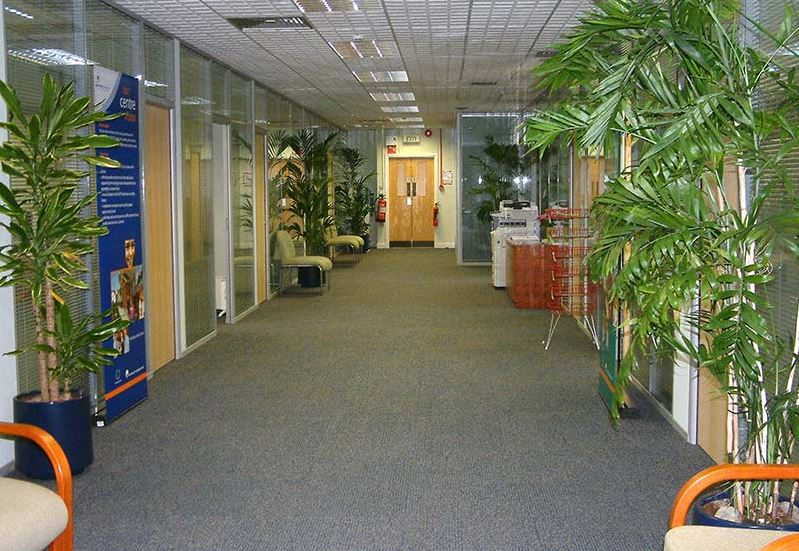 Stott Flooring Office Corridor