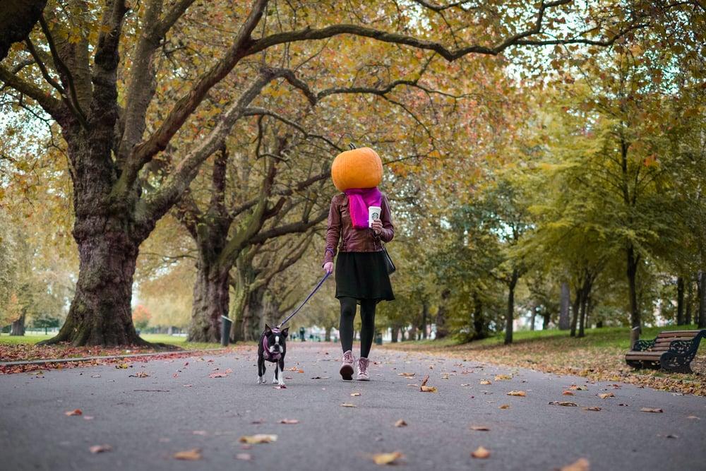 pumpkin head (1 of 1).jpeg