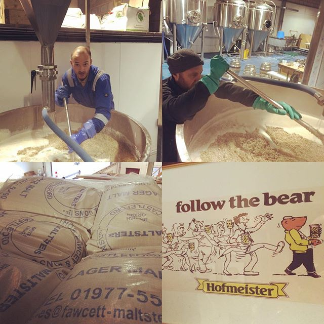Mashing in our Bavarian-style lager this morning. Might call it Monster Munchen. Should be a slightly better product than Hofmeister anyway.