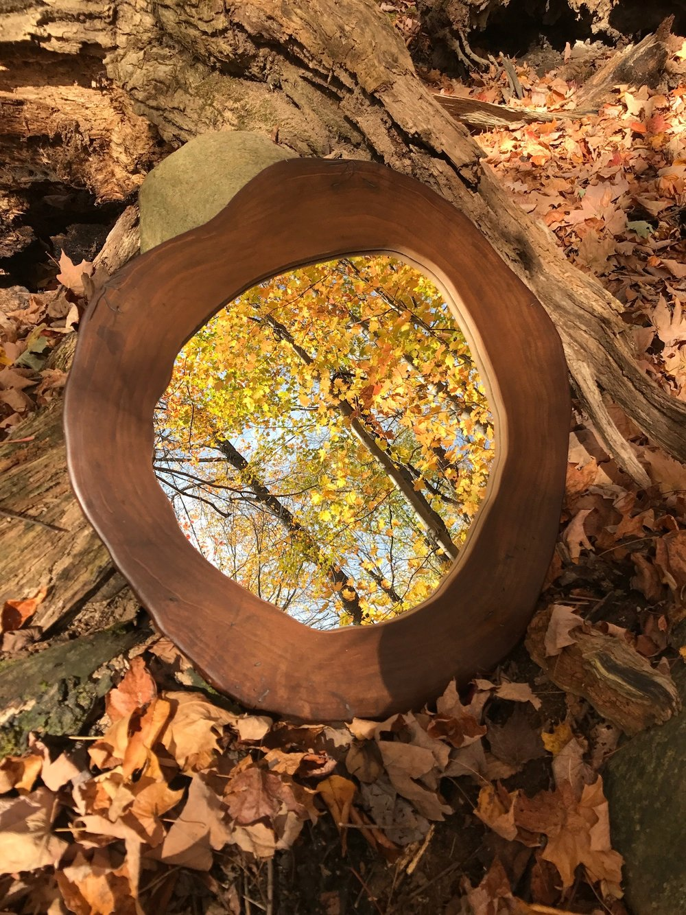 Fall leaves surround this natural style mirror reflecting the image over the trees overhead.