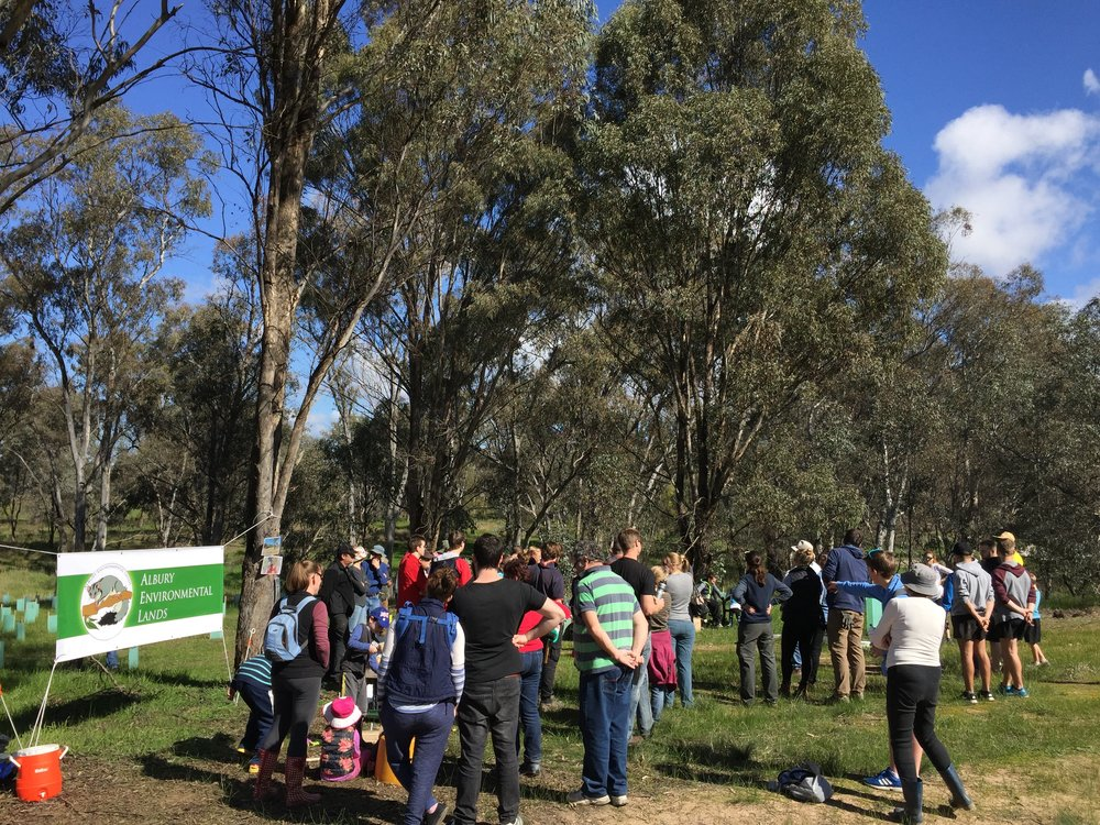 Albury Environmental Lands Community Planting and Biodiversity Education Day (August 2016)