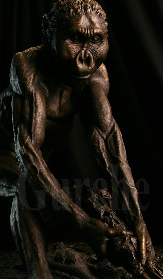 Paranthropus boisei male bronze figure