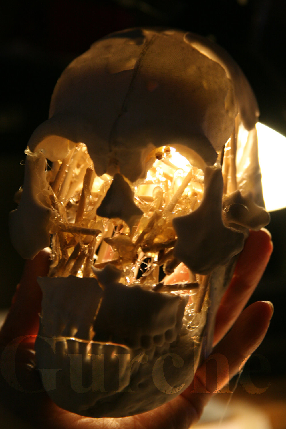 Homo naledi composite male skull reconstruction in progress IMG_0940.jpg
