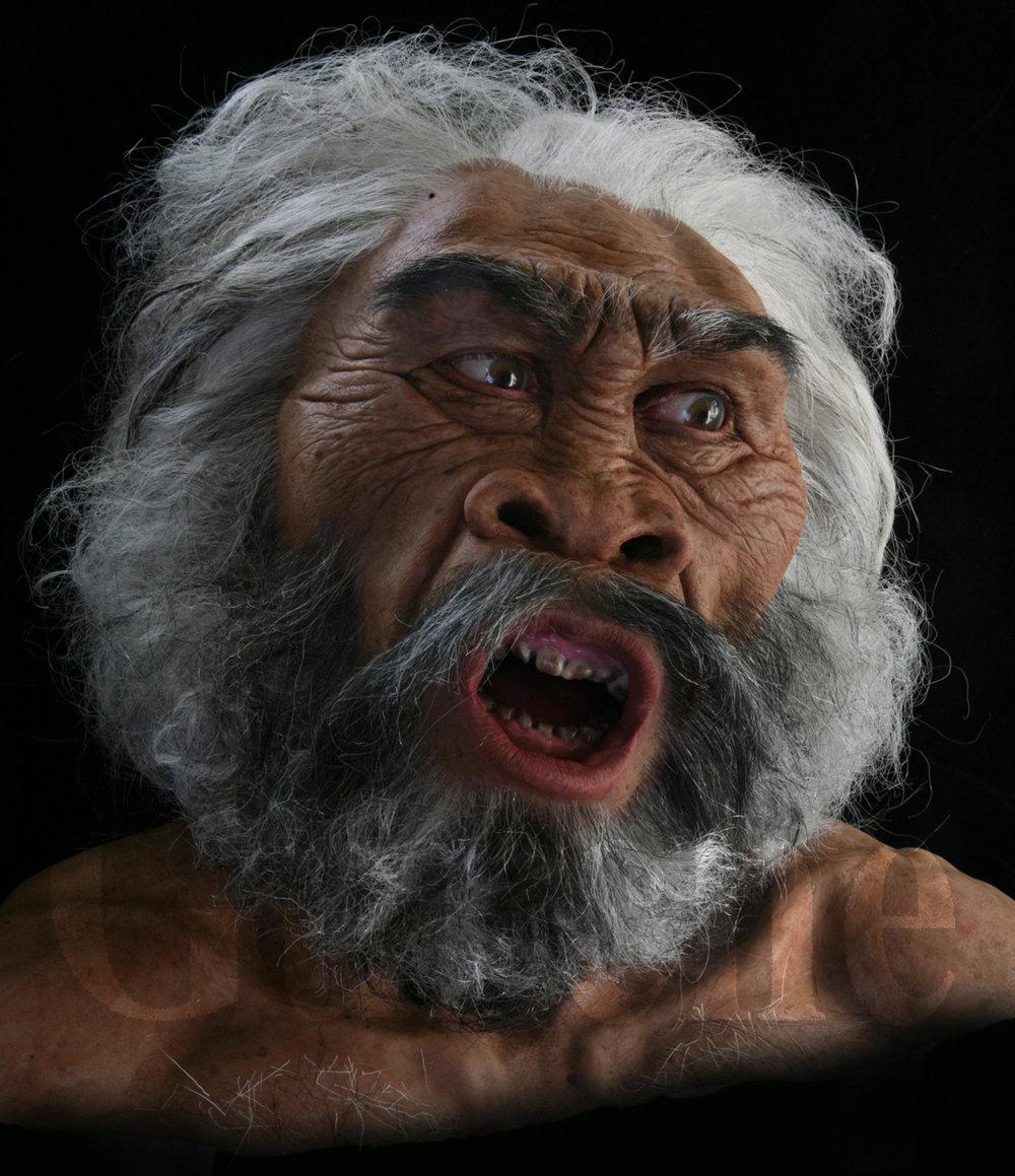 IMG_0047a Homo erectus male at Dmanisi based on skull 5.jpg