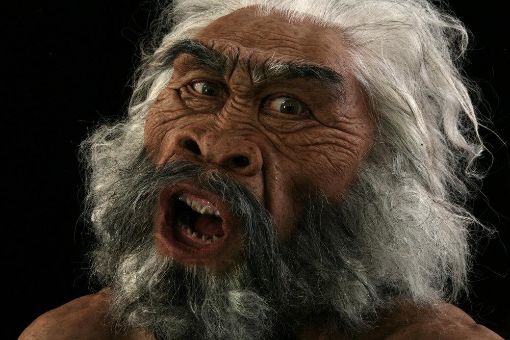 IMG_9791a Homo erectus maleat Dmanisi based on skull 5.jpg