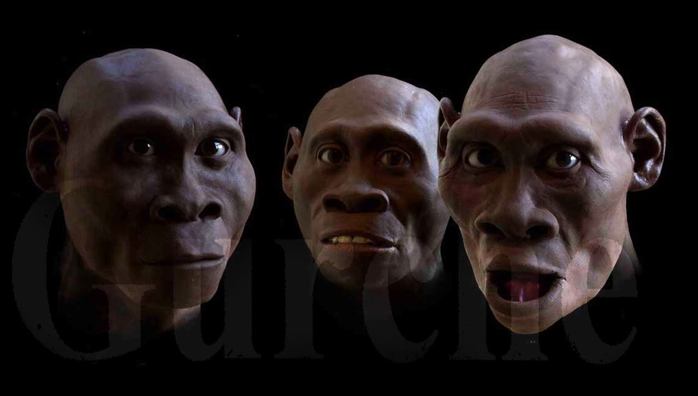 Homo erectus at Dmanisi, Republic of Georgia, based on Skulls 2, 3 and 4.