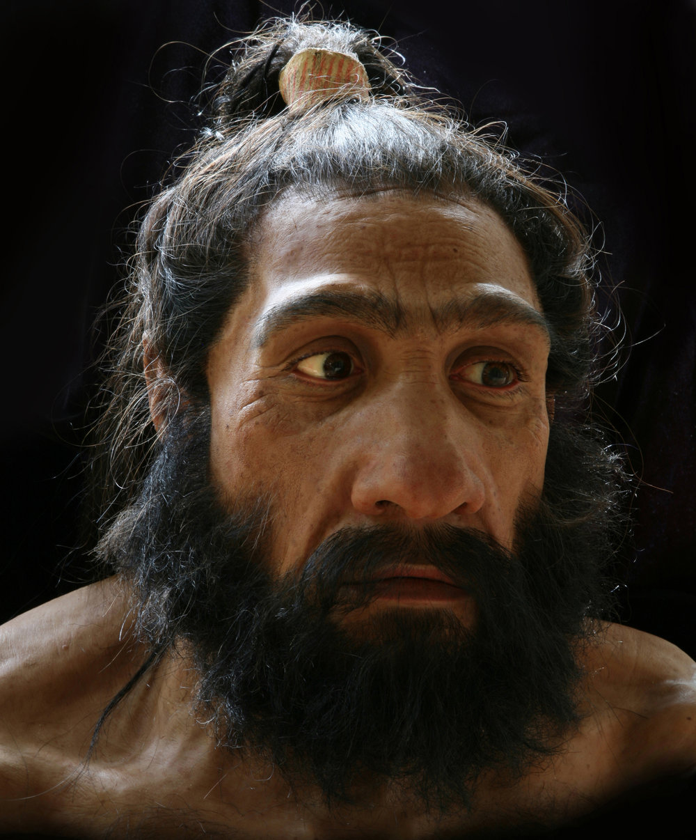 Neandertal male, based on Shanidar 1 from Iraq. On display in the Smithsonian's Hall of Human Origins.