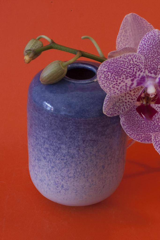 porcelaine, bleu moucheté