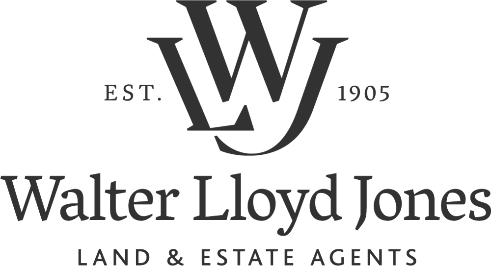 Walter Lloyd Jones