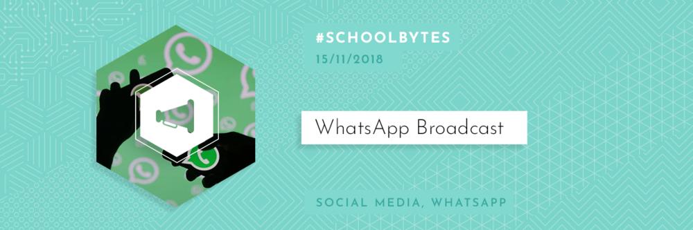 151118-WhatsappBroadcast.png
