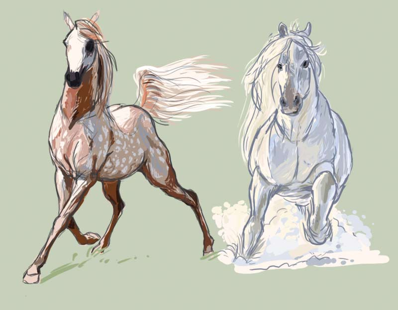 f_horse_sketch.jpg