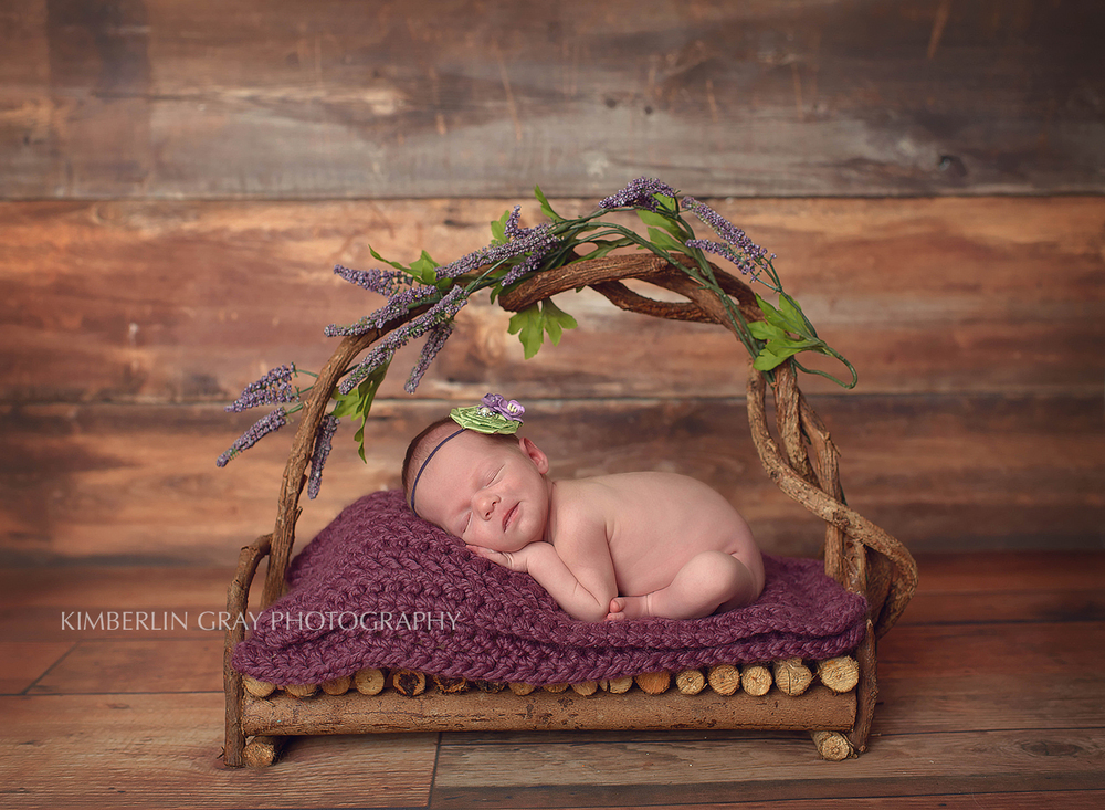 Newborn Bed Virginia Beach Newborn Photographer