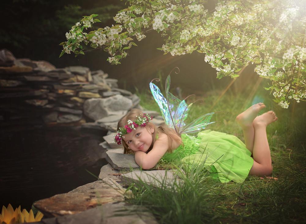 FairyArtistry-1446.jpg