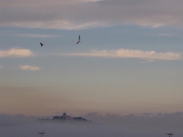 Morning Mist Es Castell