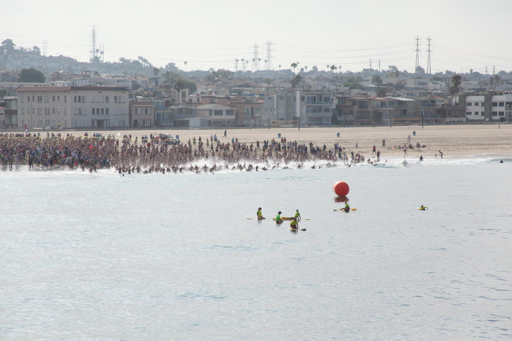 Pier to Pier Swim Start - Men Blast off
