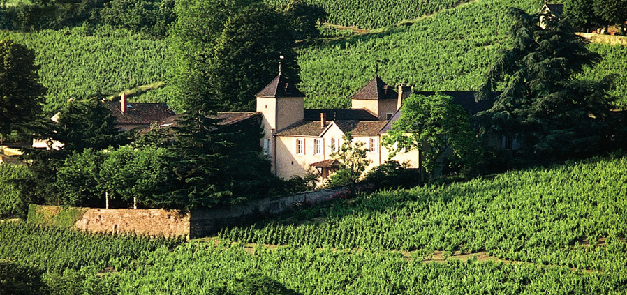 chateau-thivin-domaine-mont-brouilly.jpg