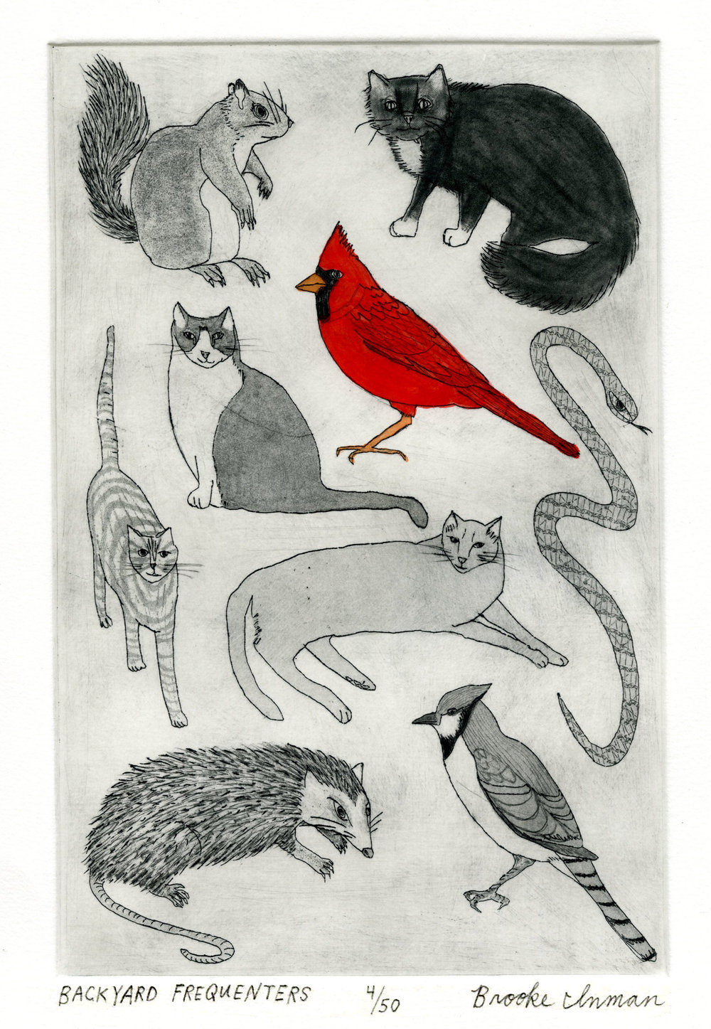 BROOKE INMAN, BACKYARD FREQUENTERS, ETCHING AND HAND COLORING