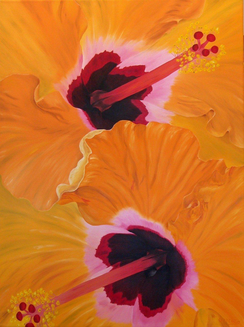 "Orange Crush 36"" x 48"""