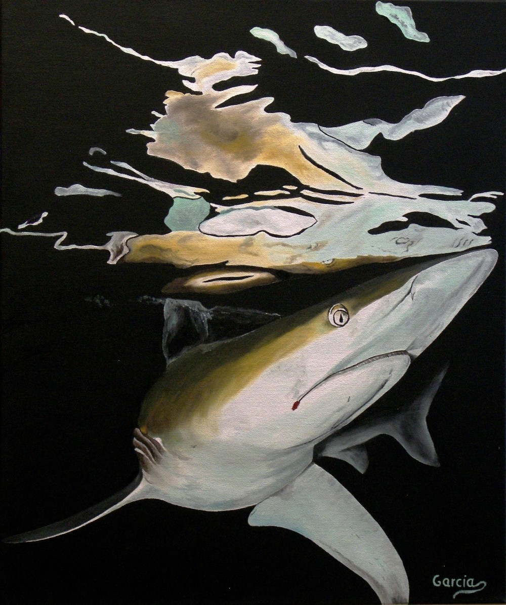 "Blacktip Hunting 20"" x 24"""