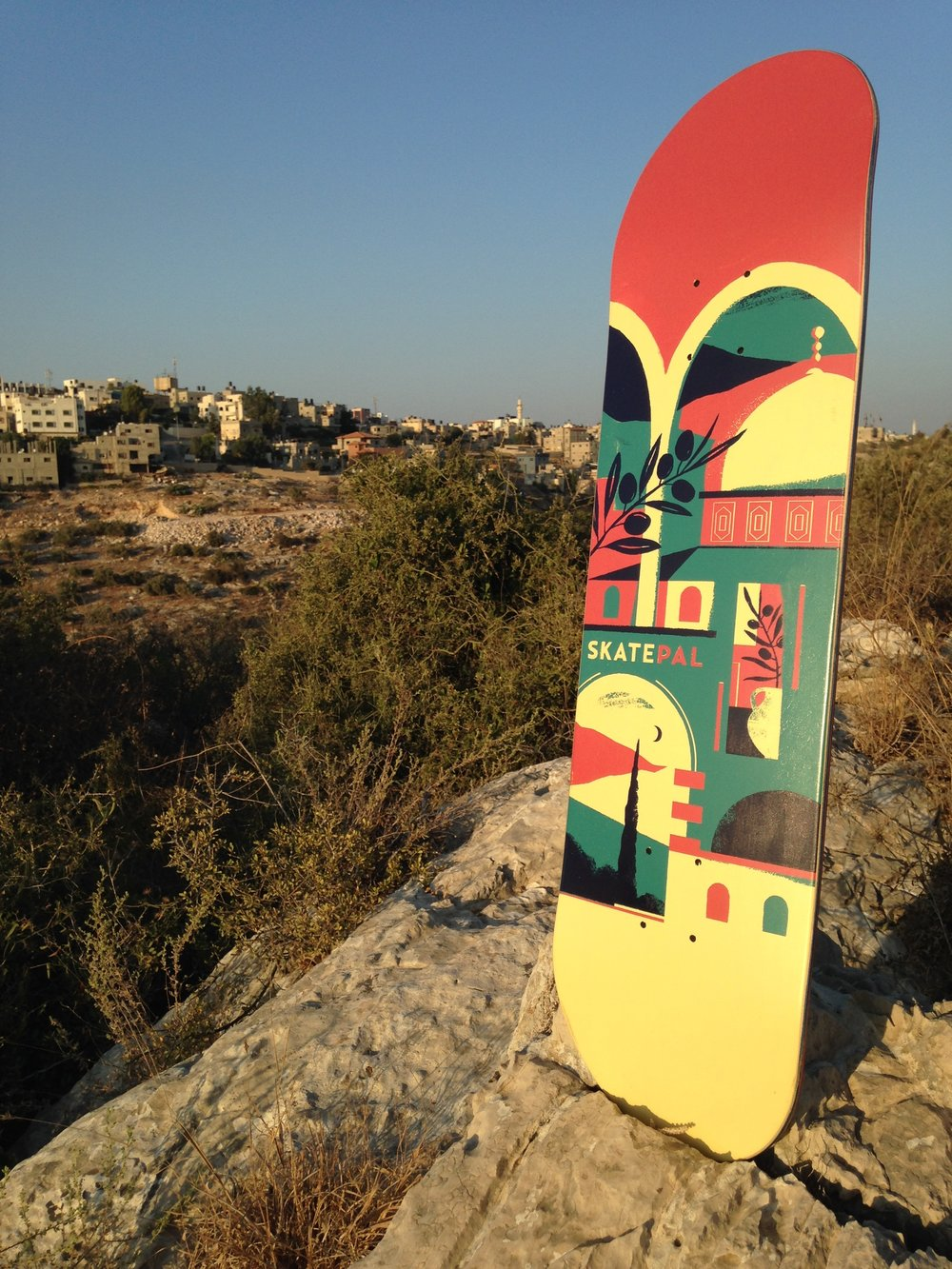 The board in it's natural habitat: Palestine