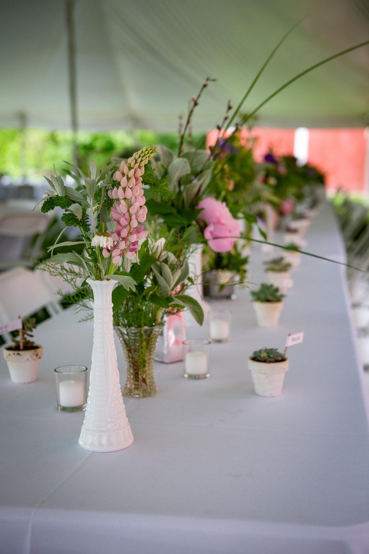 Wedding-Weaver-View-Farms-Penn-Yan-8945.jpg