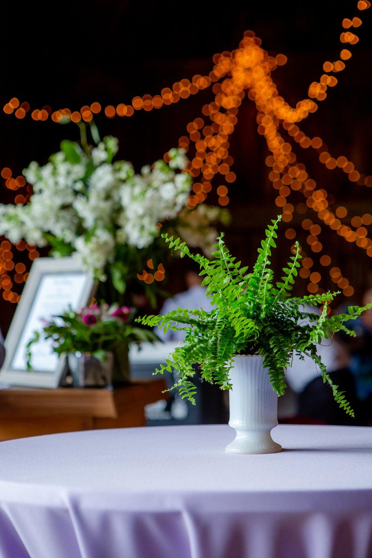Wedding-Weaver-View-Farms-Penn-Yan-9153.jpg