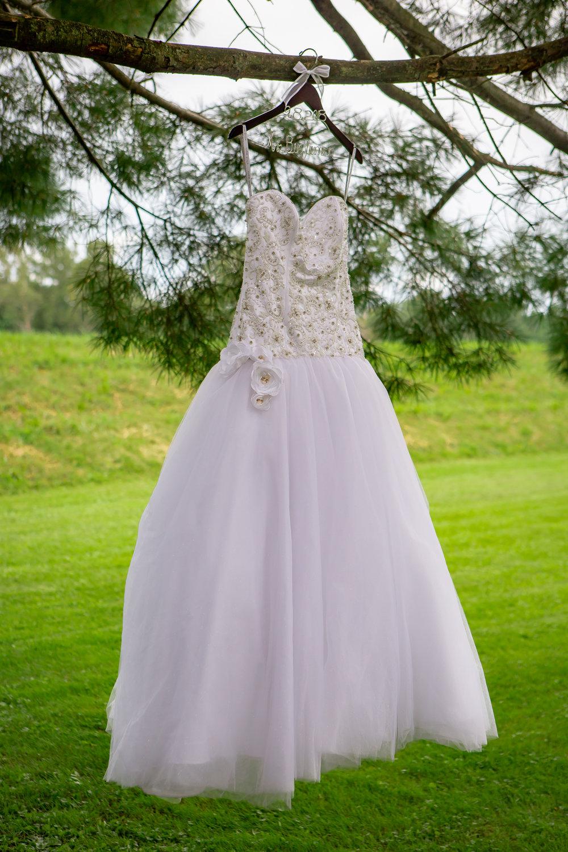 Holiday-Inn-Elmira-NY-Wedding-7421.jpg