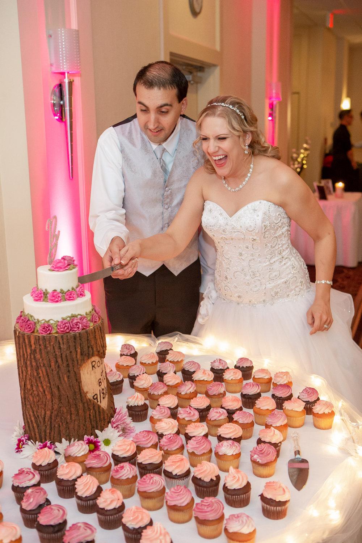 Holiday-Inn-Elmira-NY-Wedding-8254.jpg