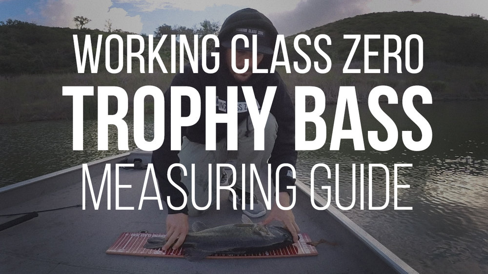 Trophy Bass Measuring Guide: A brief tutorial by Mike Gilbert on how to properly measure your fish using the Working Class Zero Big Bass Board. Click image to watch.