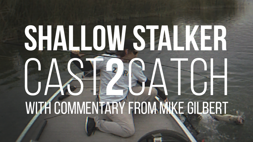Shallow Stalker: 13lb 4oz Largemouth Bass Cast2Catch Cast2Catch of a giant 13.25lb Trophy Largemouth Bass with commentary from Mike Gilbert including special insight that lead to the catch. Click image to watch.