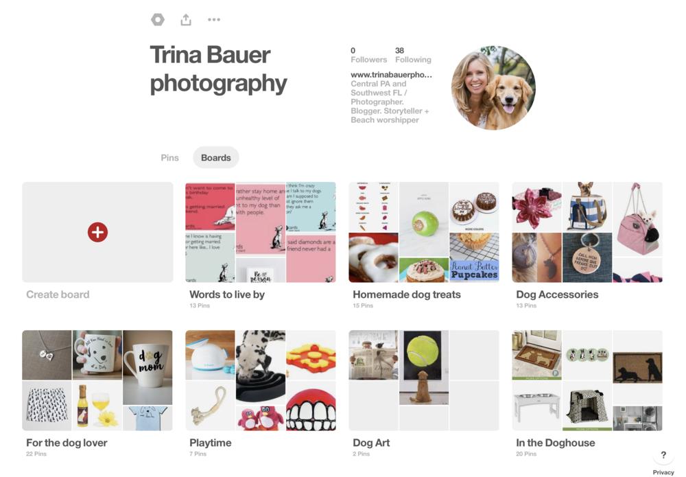 Trina.Bauer.photography.pinterest