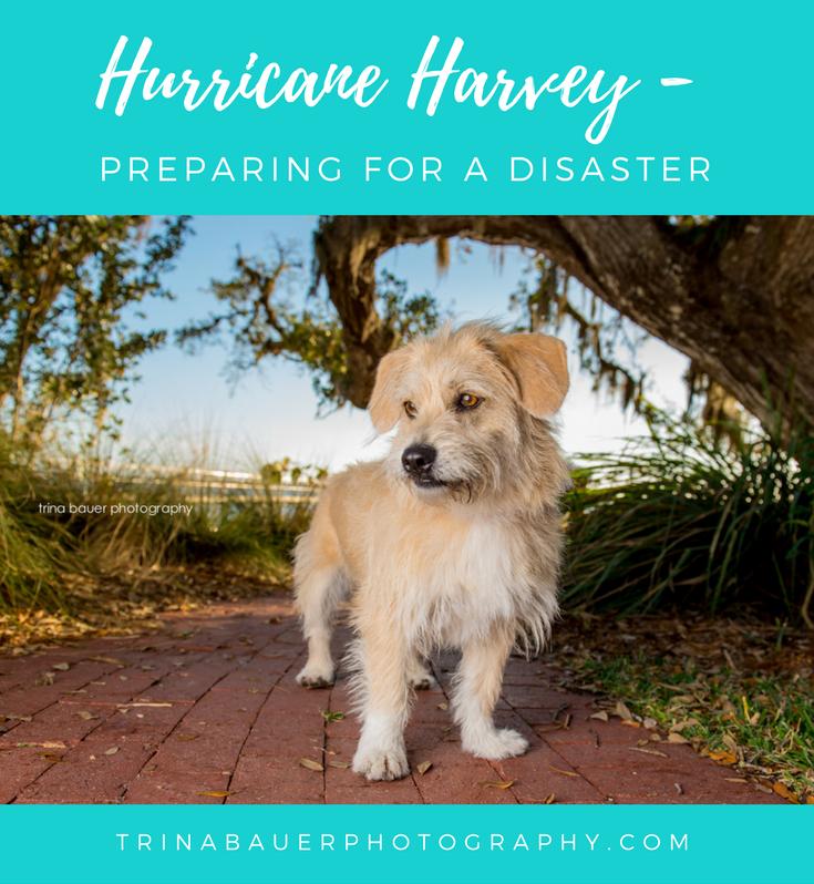Hurricane Harvey - Preparing for a disaster