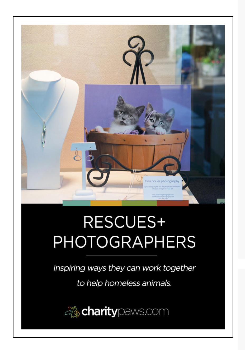 Charity Paws - Rescues and photographers