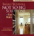 not so big solutions sarah susanka