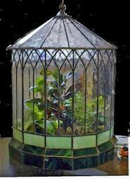 Victorian Terrariums with plants