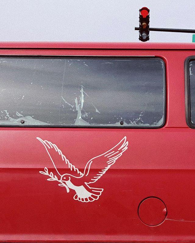 Red bird fly 🕊🌹 #35mm . . . . . #ishootfilm#filmisnotdead#back2thebase#analogphotography#bleachmyfilm#shootfilm#staybrokeshootfilm#thefilmcommunity#vsco#fdicct#analogphotography#heyfsc#filmphotography#vscofilm#portracurated#subjectivelyobjective#rentalmag#subjectivelyobjective#paperjournalmag#paradisexmagazine#oftheafternoon#somewheremagazine#lekkerzine#verybusymag#misomultiples#everybodystreet#lensculturestreets#photofilmy#thefilmcommunity#grainisgood#portra400#vsco#cars