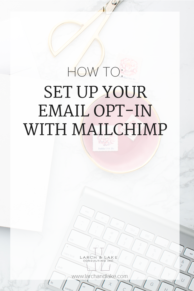You have the email opt-in, but now you need to start collecting those emails. There are several ways you can do this, let's look at them further.
