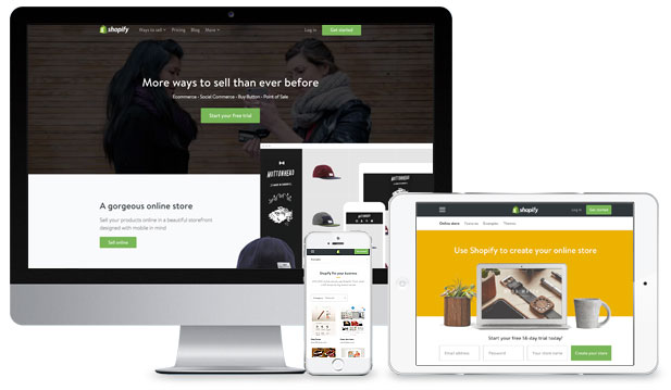 Shopify provides a variety of mobile responsive themes ideal for a positive user experience and appealing design aesthetics.