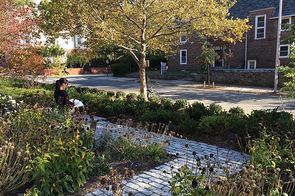 Embassy boston study center