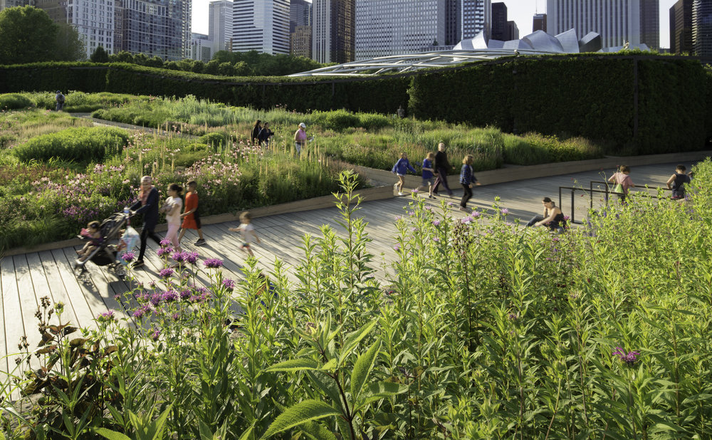 The Lurie Garden at Millennium Park
