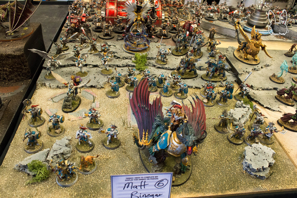 Armies on Parade Houston_06.jpg