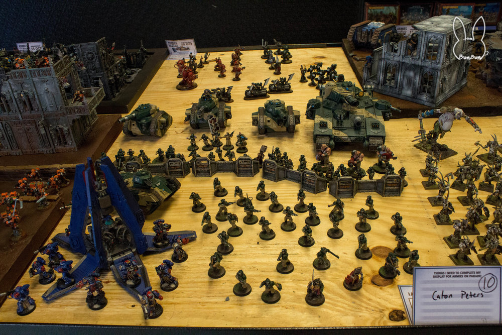 Armies on Parade Houston_24.jpg
